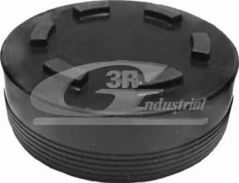 3RG 84700 - Plug, rocker arm shaft mounting bore detali.lv