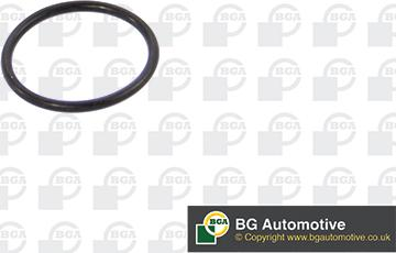 BGA AG0670 - Gasket, vacuum pump detali.lv