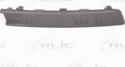 BLIC 5703059540924P - Trim/Protective Strip, bumper detali.lv