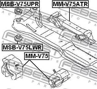 Febest MSBV75LWR - Mounting, axle beam detali.lv